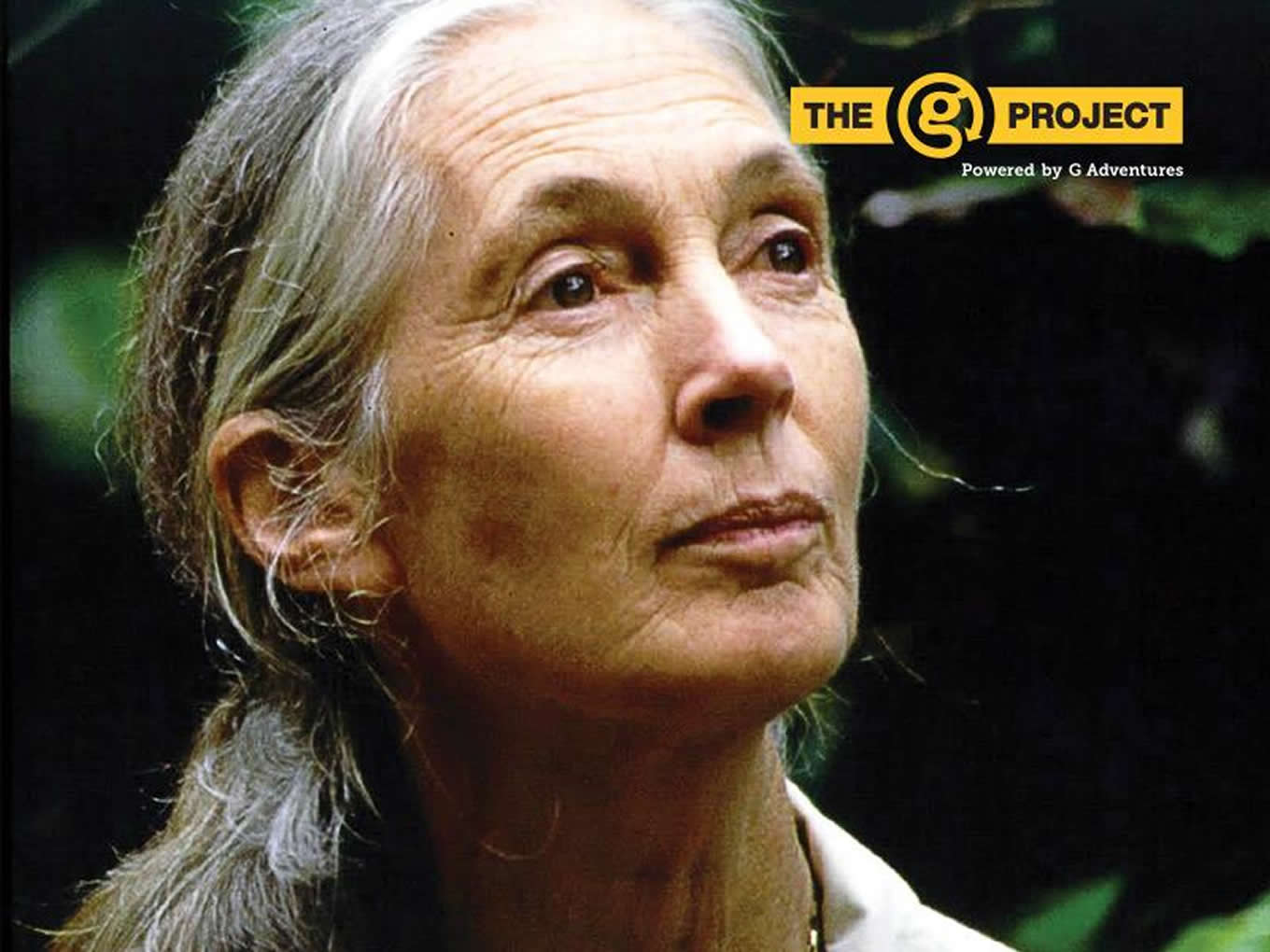 Acclaimed Primatologist and Humanitarian Jane Goodall as G Project Judge