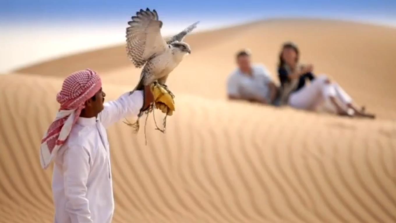 Dubai Cultural Attraction Marketing Campaign by Definitely Dubai