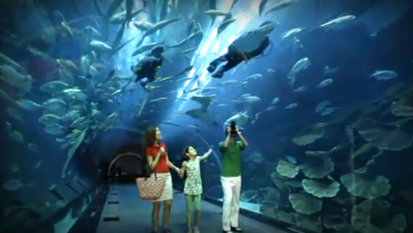 Leisure TV Commercial Advertising Campaign of Definitely Dubai in 2010