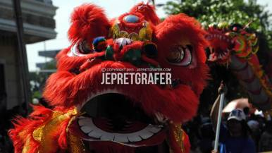 Chinese Barongsai Dance Performance, Culture Parade and Flower Carnival, Surabaya