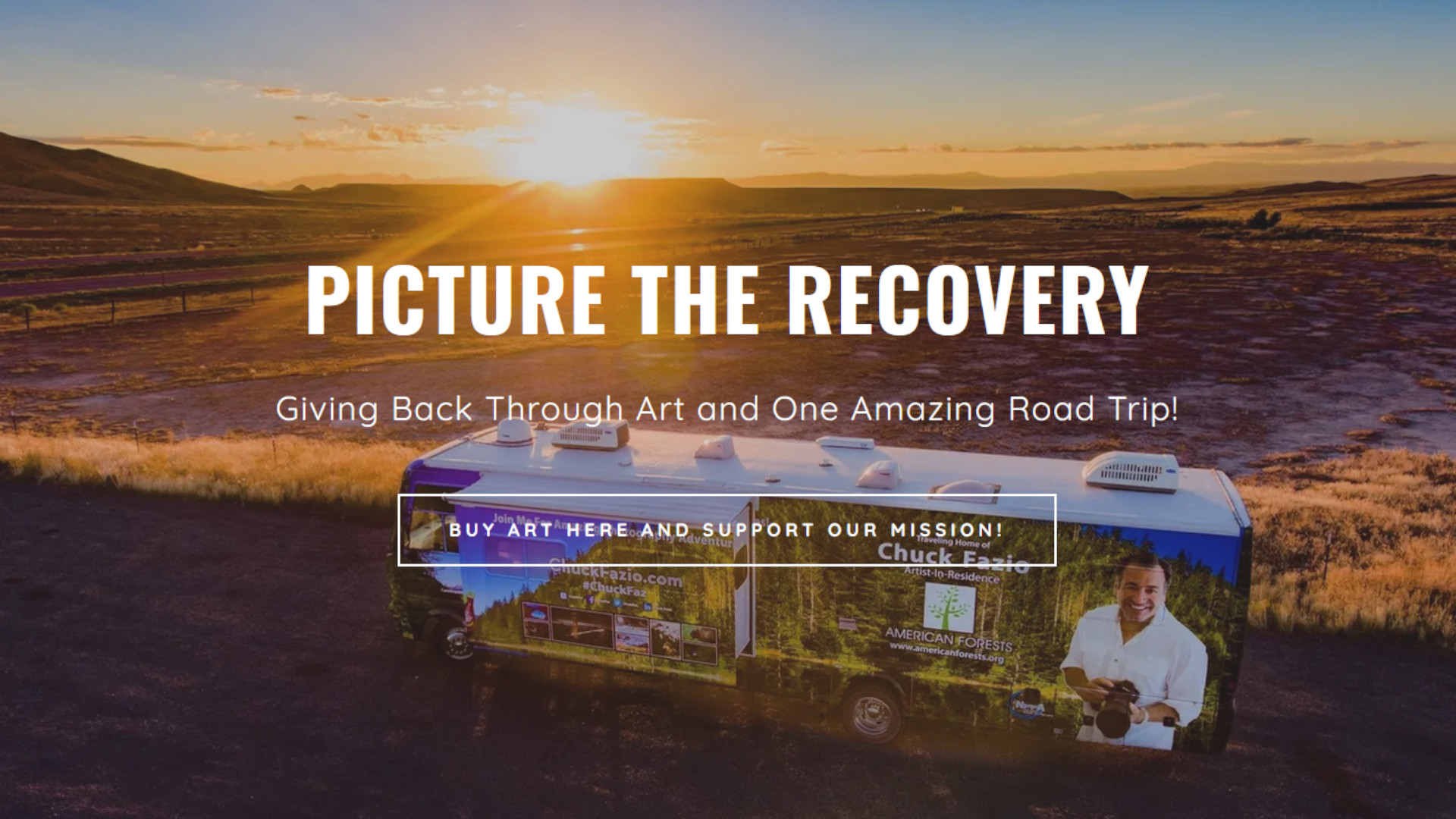 Picture The Recovery Campaign