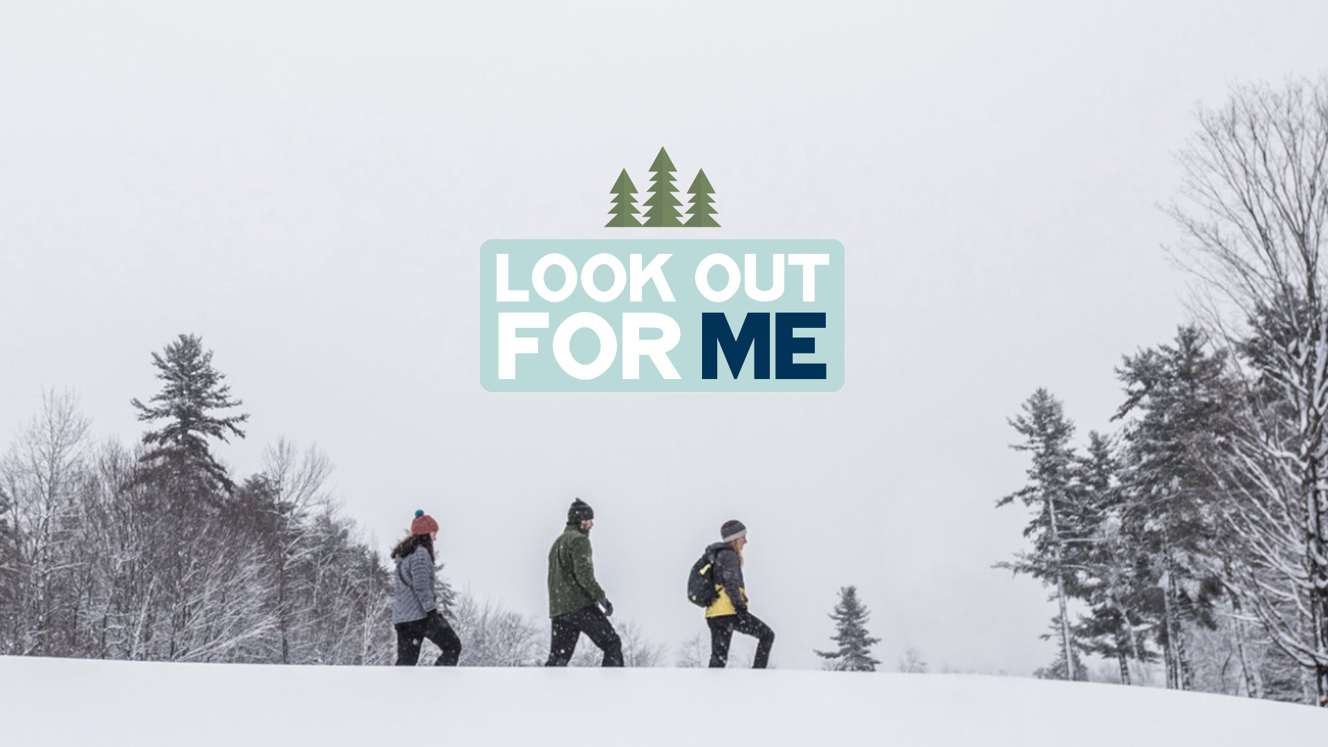 Look Out for ME, Maine Office of Tourism