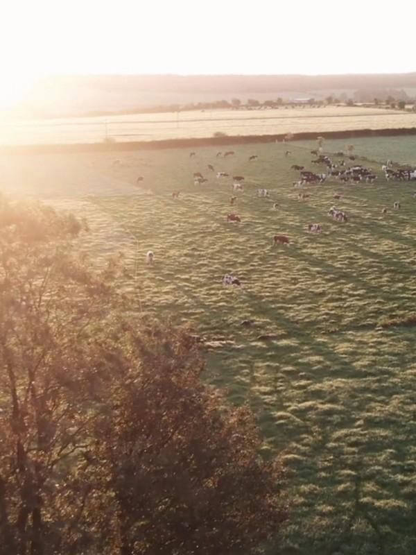 Bo Rua Farm, Ireland