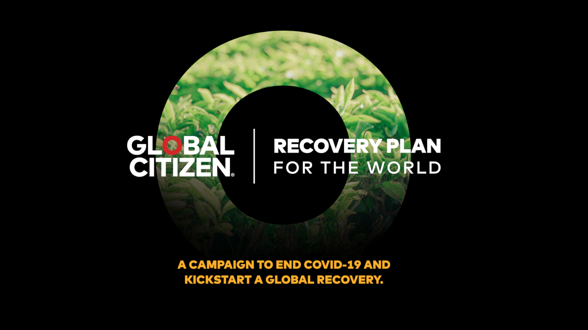 Recovery Plan for The World, Global Citizen