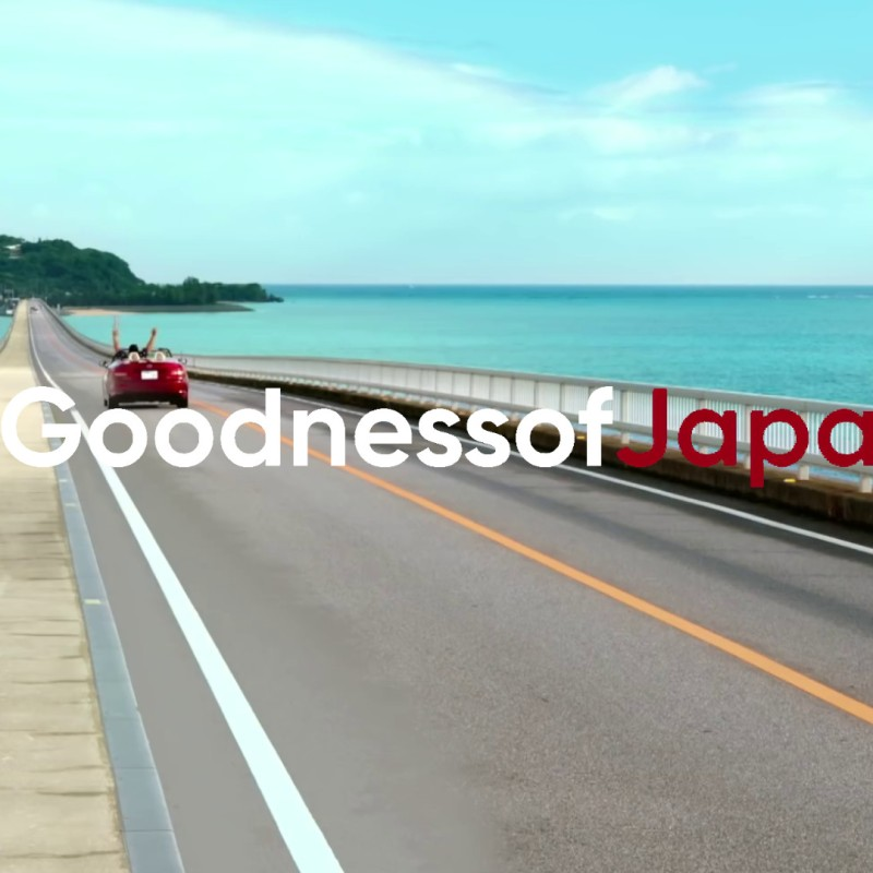 Goodness of Japan Campaign, The Lessons Learned