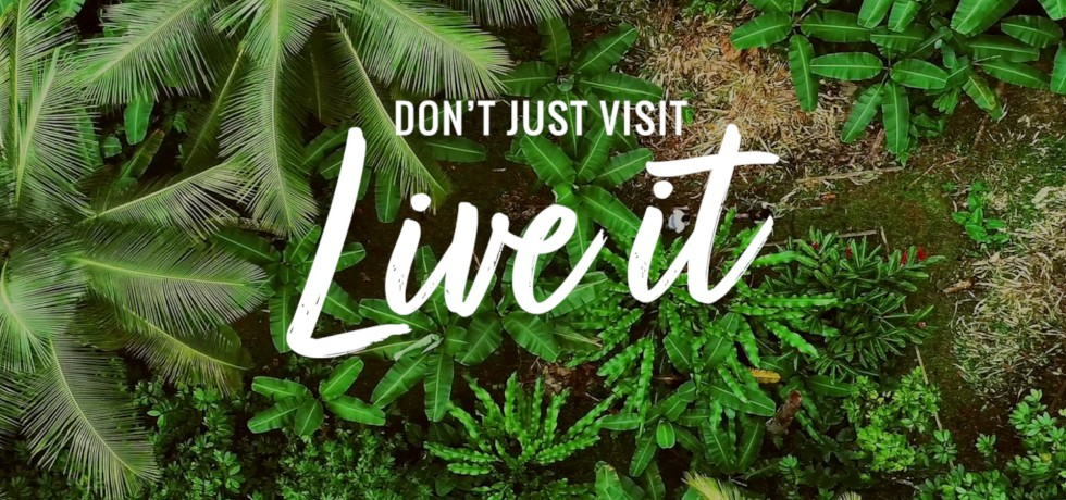 Live It, Remote Work Program of Saint Lucia