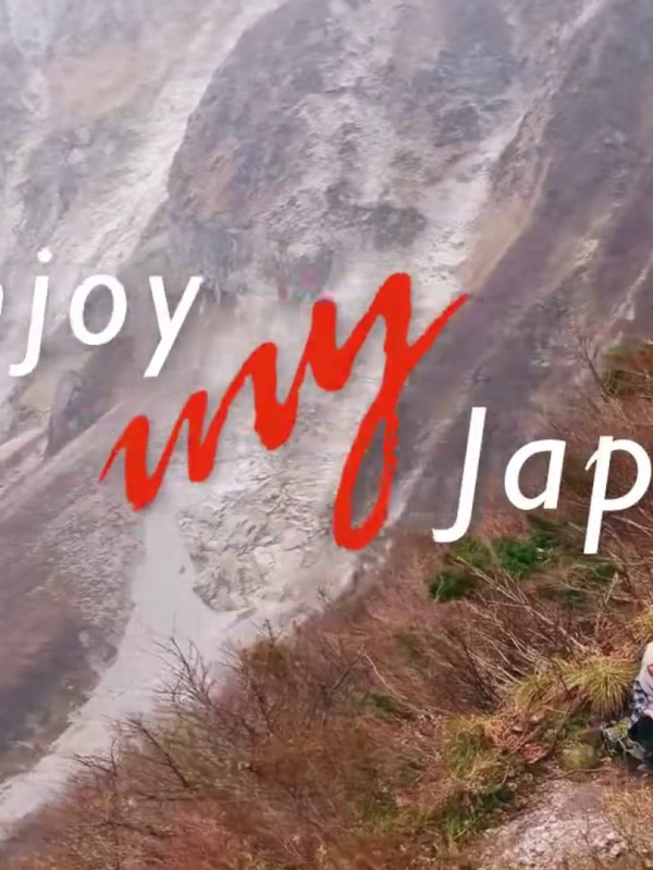 Lessons Learned from Enjoy My Japan Campaign